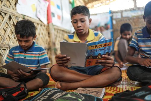 Picture Dictionary | Rohingya refugee | Books Unbound